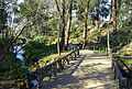 Arisugawa-no-miya Memorial Park - DSC06876.JPG