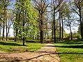 Arkadijas parks - panoramio (7).jpg