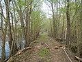 Arkansas Township, AR, USA - panoramio (2).jpg