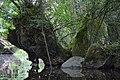 Auray (River)LeLochAmont de la Rivière d'AurayAout2018MorbihanLamiotMFL b 04.jpg