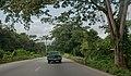 Autopista de Oriente.jpg