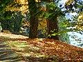 Autumn Scene in Stanley Park - Vancouver - BC - Canada - 14 (26198181889) (2).jpg