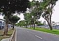 Avenida Marechal Hermes - Belém.jpg