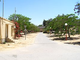 Avenue Revivim.jpg