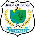 BRASÃO GUARDA MUNICIPAL DE PETROLÂNDIA.jpg
