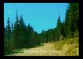 Babyshoe Pass on Mount Adams.png