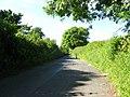 Back lane to Redberth - geograph.org.uk - 874052.jpg