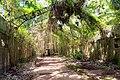 Bagne de l'île Saint Joseph, îles du Salut, Guyane Française.jpg