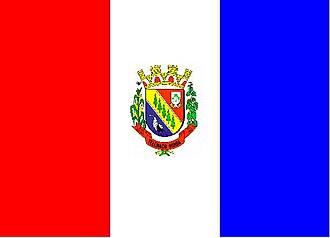 Telêmaco Borba - Image: Bandeira telemaco borba