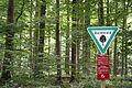 Bannwald Gemeinde Rockenberg1.jpg