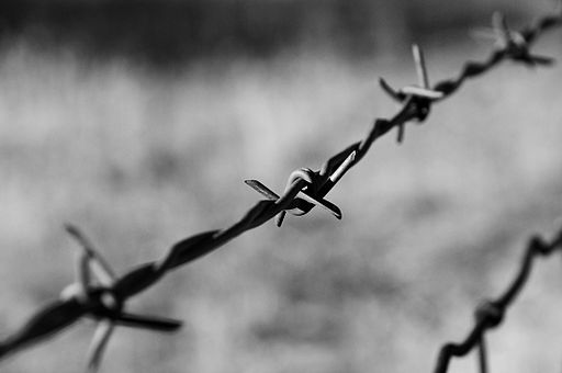 Barbed Wire on a moto ride - BW