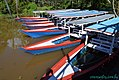 Barcos coloridos em Lago Janauari.jpg