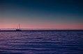 Bari Glew 2015-08-27 (Unsplash).jpg