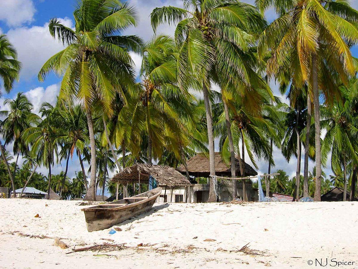 Tanzania Beach Hotels