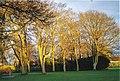 Beautiful Duthie Park - geograph.org.uk - 285460.jpg