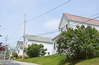 Wilkins Township, Allegheny County, Pennsylvania - Houses on Beaver Avenue