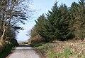 Bend in the road beyond Beudy Drylliau - geograph.org.uk - 1801675.jpg