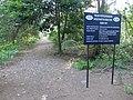 Besar Island Cemetery.jpg