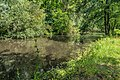 Beuvron River in Bracieux.jpg