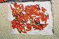 Bhutanese chili.jpg
