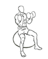 Biceps-curl-seated-on-stability-ball-2.png