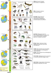 Madagascar-Climate-Biogeographic timetable of Madagascar - journal.pone.0062086.g003