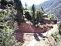 Bizim Evden Sugıran - panoramio.jpg
