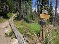 Black Elk Peak hike 09.jpg