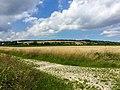 Blick auf Neuhof und den Panoramaweg - panoramio.jpg