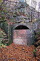 Blue Rock Tunnel, Forest of Dean - geograph.org.uk - 1036472.jpg