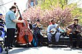 Bluegrass musicians in Washington Square Park, NYC - April 2012.jpg
