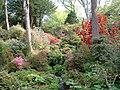 Bodnant Gardens - geograph.org.uk - 90444.jpg