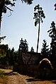 Borjomi Tall (8359630445).jpg