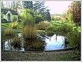 Botanischer Garten Freiburg - Botany Photography - panoramio (6).jpg