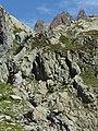 Bouquetin @ Lacs des Chéserys @ Hike to Lacs des Chéserys, Lac Blanc, Lac Cornu & Lacs Noirs @ Réserve Naturelle des Aiguilles Rouges @ Chamonix (15356939482).jpg