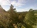 Boynton Canyon Trail, Sedona, Arizona - panoramio (31).jpg