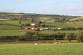 Bradninch, pasture near Poundapit Farm - geograph.org.uk - 71628.jpg
