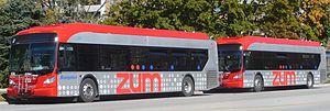 Züm - Image: Brampton Transit Zum Zum
