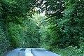Brayford, Charlestown Barton Wood - geograph.org.uk - 533264.jpg