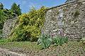 Brescia Castello fortificazioni.jpg
