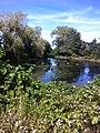 Brewster, MA 02631, USA - panoramio (6).jpg
