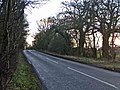 Brickendon Lane, Hertfordshire, looking south - geograph.org.uk - 115251.jpg