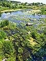 Bridge of Love (Boguslav, Ukraine) Міст кохання (Богуслав, Україна) (50170434612).jpg