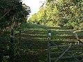 Bridgford Street - geograph.org.uk - 1555326.jpg