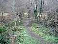 Bridleway crossing the Mawddach Trail - geograph.org.uk - 1103561.jpg