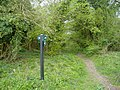 Bridleways divide, near Melsome Wood - geograph.org.uk - 410509.jpg