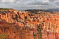 Bryce Canyon National Park, United States (Unsplash T73bH rDWXQ).jpg