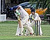 Buckhurst Hill CC v Dodgers CC at Buckhurst Hill, Essex, England 47.jpg