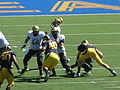 Buffaloes on offense at Colorado at Cal 2010-09-11 20.JPG