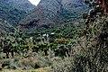 Bujuku Hut,Rwenzorii,Uganda - panoramio.jpg